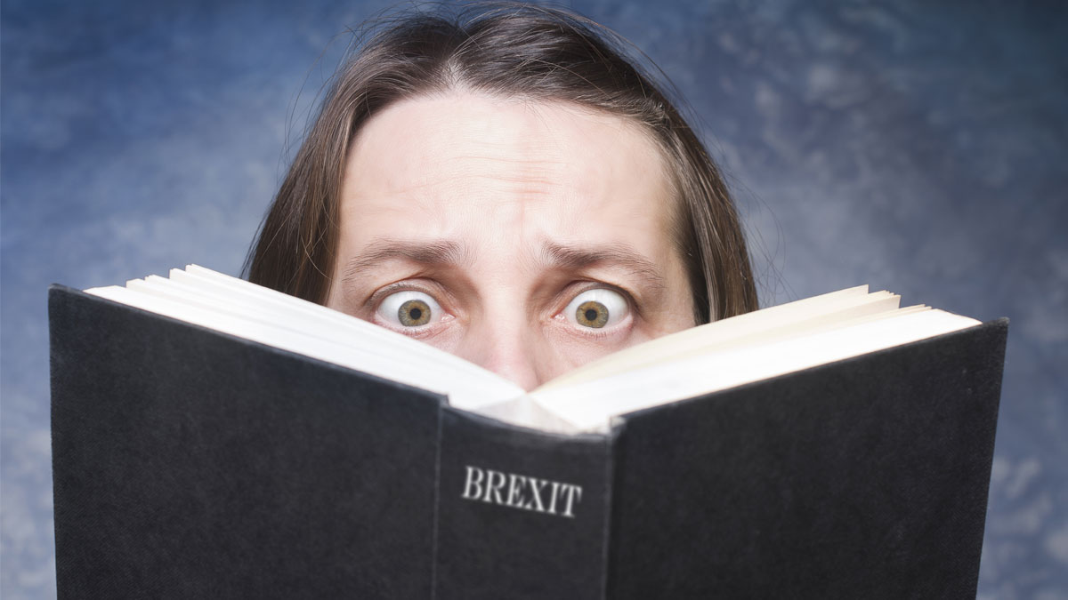 Brexit written on cover of book on blue background.. Mature woman being focused and hooked by book. - Image