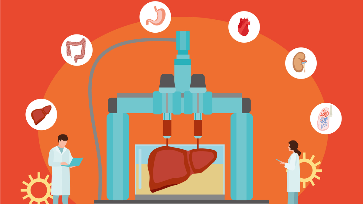 Concept of bioprinting of tissues and organs on red background. Colorful vector illustration in flat style. - Vector
